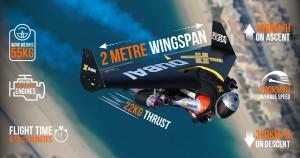 Jetman Dubai wing specs